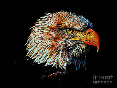 Photograph - Eagle 17918 by Ray Shrewsberry
