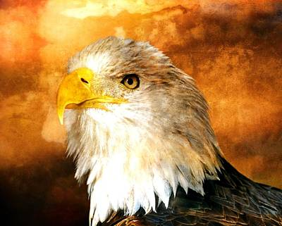 Photograph - Eagle 200a by Marty Koch