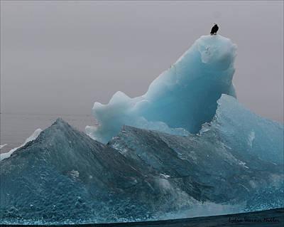 Eagle And Iceberg 82 Art Print