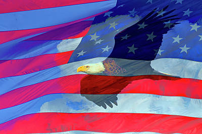 Photograph - Eagle And Us Flag by Gary Corbett