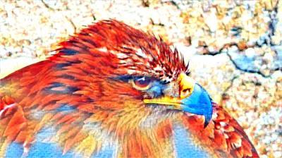 Mixed Media - Eagle Art 1  by Ayasha Loya