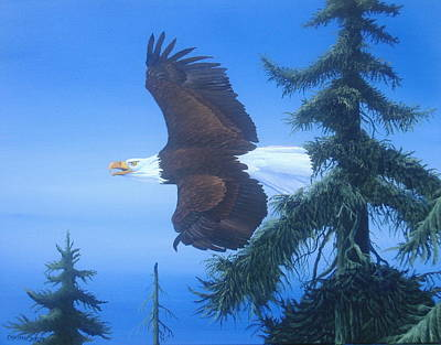 Michael Allen Painting - Eagle At Treetop Level by Michael Allen