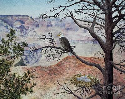 Eagle Canyon Art Print by DParins Zich