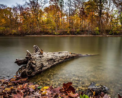 Photograph - Eagle Creek Park by Ron Pate