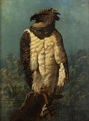 Vulture Painting - Eagle by Ernest-Henry Griset