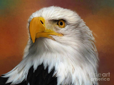 Painting - Eagle Eye by Jim Hatch