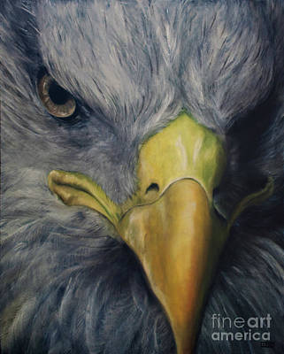 Oil Painting - Eagle Eye- Stare Of The Eagle by Julie Bond