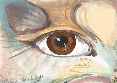 Eagle Eye Art Print