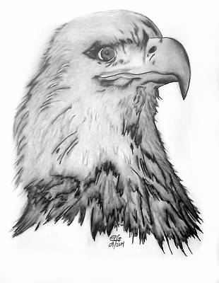 Drawing - Eagle by Gilbert Photography And Art