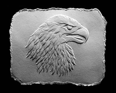 Photograph - Eagle Head Relief Drawing by Suhas Tavkar