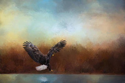 Eagle In Flight Photograph - Eagle Hunting In The Marsh by Jai Johnson