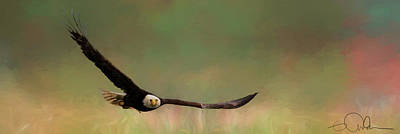 Digital Art - Eagle In Flight by Gloria Anderson