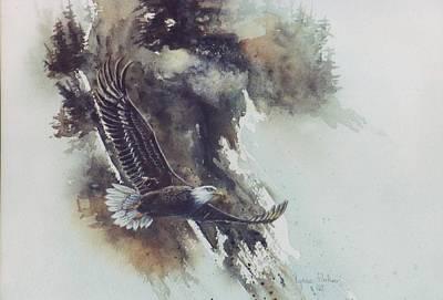 Eagle In Flight Art Print by Lynne Parker