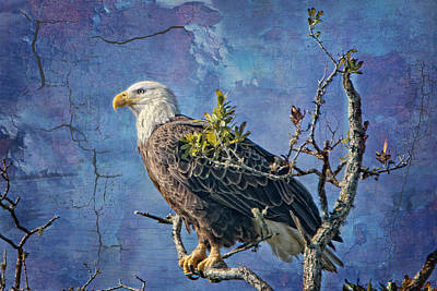 Eagle In The Eye Of The Storm Art Print by Bonnie Barry