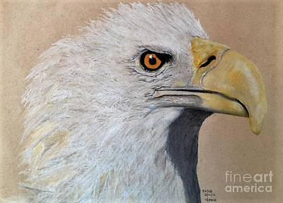 Collectible Mixed Media - Eagle by Jamie Silker