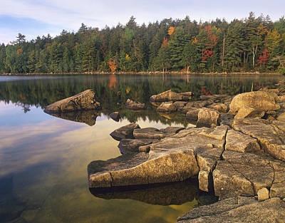 Maine Shore Photograph - Eagle Lake Acadia National Park Maine by Tim Fitzharris