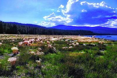 Photograph - Eagle Lake Afternoon by Kirsten Giving
