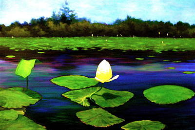 Painting - Eagle Lake Waterlilies by Jeanette Jarmon