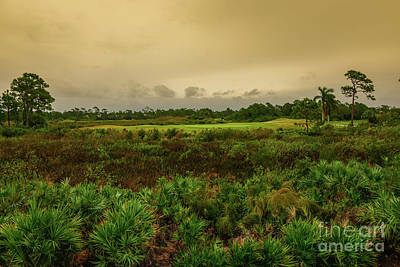 Photograph - Eagle Marsh Golf Club Jensen Beach Florida by Olga Hamilton