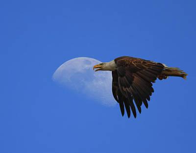 Eagle Moon Art Print