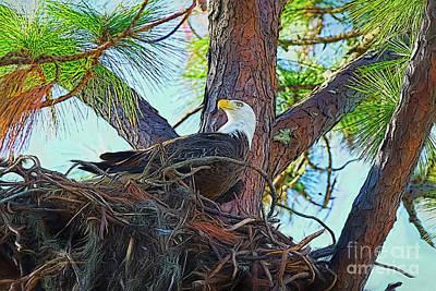 Painting - Eagle Nest Painterly by Deborah Benoit