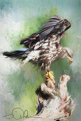 Digital Art - Eagle On A Log by Gloria Anderson