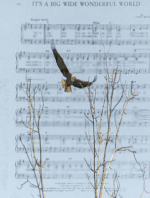 Photograph - Eagle On Sheet Of Music by Randy J Heath