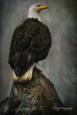 Photograph - Eagle On Watch by Nancy Morgantini