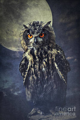 Night Owl Mixed Media - Eagle Owl by Angela Doelling AD DESIGN Photo and PhotoArt