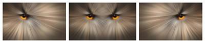 Eagle Owl Eye Triptych Art Print