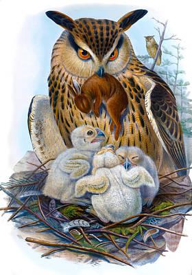 Popular Rustic Neutral Tones - Eagle Owl Antique Bird Print Joseph Wolf HC Richter Birds of Great Britain by Orchard Arts
