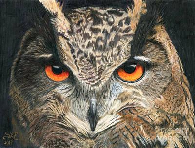 Drawing - Eagle Owl by Sheryl Elen