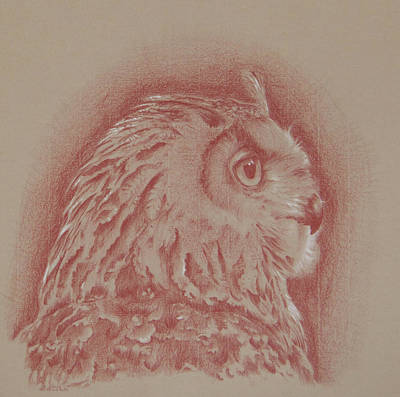 Drawing - Eagle Owl by Wendy Booth