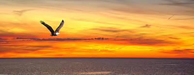 Mellow Yellow - Eagle panorama sunset by Randall Branham