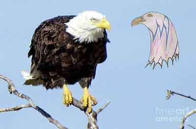 Eagle Reflection Art Print