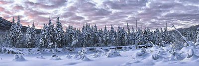 Winter Scene Photograph - Eagle River Treeline by Ed Boudreau