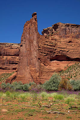 Photograph - Eagle Rock - Standing Tall In The Canyon by Lucinda Walter