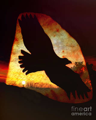 Photograph - Eagle Sunset by Kathy M Krause