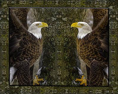 Photograph - Eagle Totem Eyes by LeeAnn McLaneGoetz McLaneGoetzStudioLLCcom