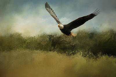 Photograph - Eagle Unleashed by Jai Johnson