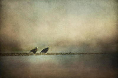 Photograph - Eagles At The Oyster Bar by Jai Johnson