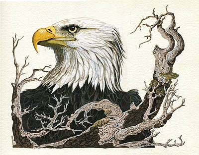 Eagle's View - Wildlife Painting Art Print by Linda Apple