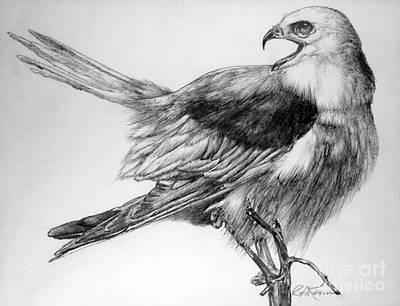 Eaglet Art Print by Roy Anthony Kaelin