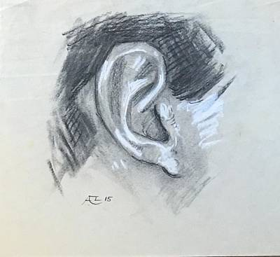 Drawing - Ear From Life by Alejandro Lopez-Tasso