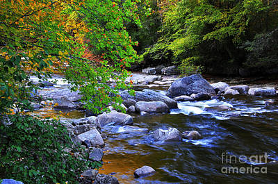 Early Autumn Along Williams River Art Print by Thomas R Fletcher