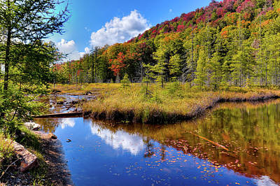 Photograph - Early Autumn At Bald Mountain Pond by David Patterson