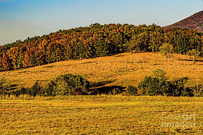 Photograph - Early Autumn In The Mountains 1572t by Doug Berry