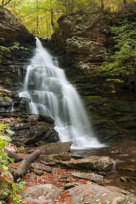 Photograph - Early Autumn Morning Below Ozone Falls by Gene Walls