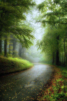 Photograph - Early Autumn by Plamen Petkov