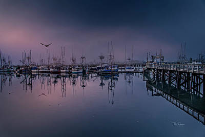 Photograph - Early Bay Fog by Bill Posner